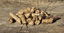 pellets пеллеты биофпиб дубовые пелеты biofpeb пелети из дуба